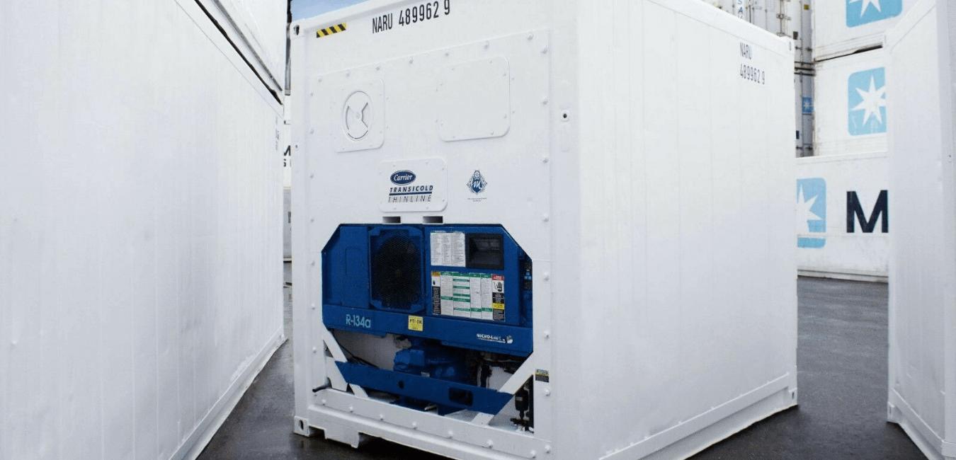 Sas gel : quelle chambre froide container pour quel produit ?